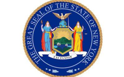 SSL Founder Testifies Before New York State Senate Task Force